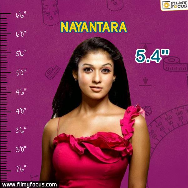 Nayaatara, Nayaatara Movies
