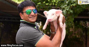 Ravi Babu, Actor Ravi Babu, Director Ravi Babu, Ravi Babu Movies,