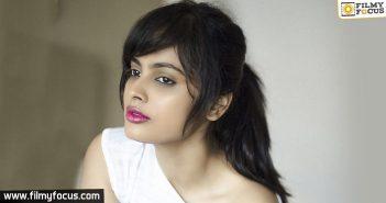 Ekkadiki Pothavu Chinnavada Movie, Hero Nikhil, Actress Nandita Swetha, allu arjun