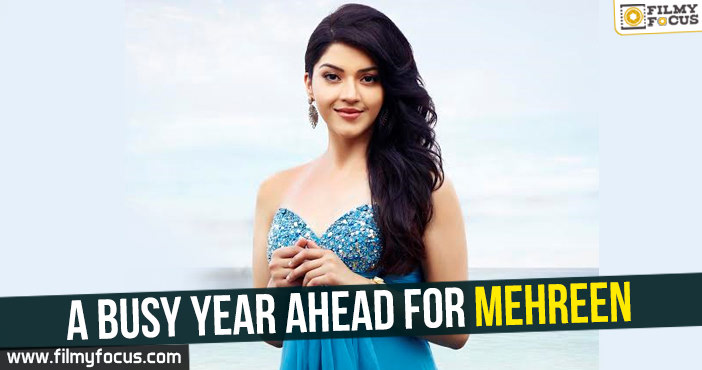 Actress Mehreen, Mehreen Pirzada, Phillauri movie, Jawaan Movie, Sundeep Kishan, Sharwanand,