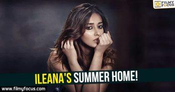 ileana Movies, Ileana D'Cruz, actress ileana, badshaho movie, mubarakan movie, manam movie remake