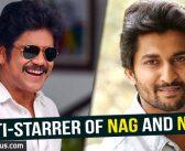 Multi-starrer of Nag and Nani?