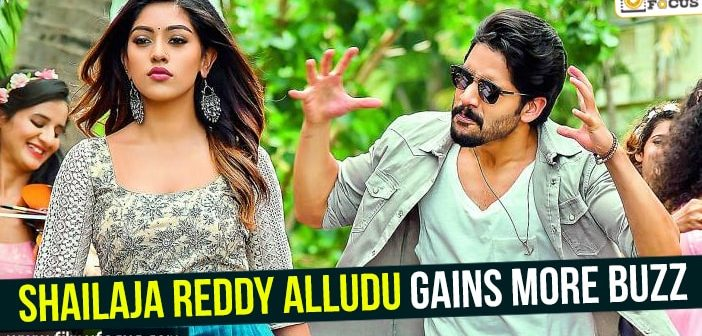 Shailaja Reddy Alludu gains more buzz