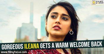 Ileana, Ileana D'Cruz, Actress Ileana, Ravi Teja, Sreenu Vaitla