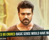 VVR crosses 60 crores-Basic sense would have made it a hit