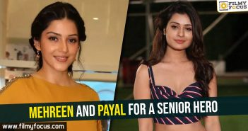 mehreen-and-payal-for-a-senior-hero