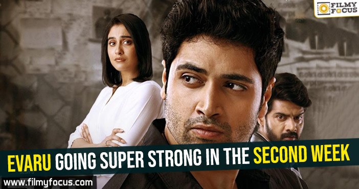 evaru-going-super-strong-in-the-second-week