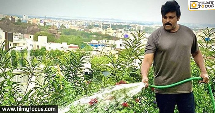 Chiranjeevi spends good time during isolation-Picture Inside