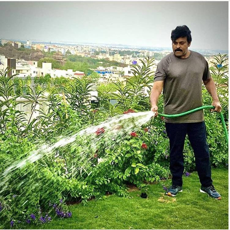 Chiranjeevi spends good time during isolation-Picture Inside1