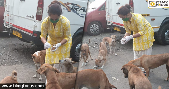 Coronavirus Pandemic This Television actress was seen feeding stray dogs