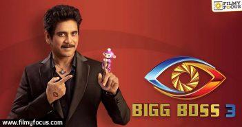 Will Bigg Boss re-telecast win hearts