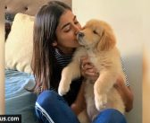 Pooja Hegde posts the most cutest pic!