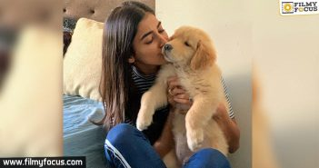 Pooja Hegde Posts The Most Cutest Pic