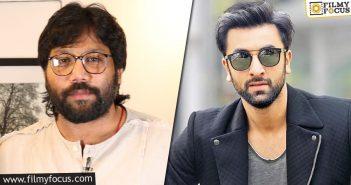 Sandeep Reddy And Ranbir Film Back In Business