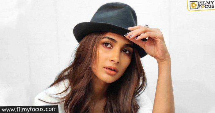pooja hegde the go to for top actors and directors!